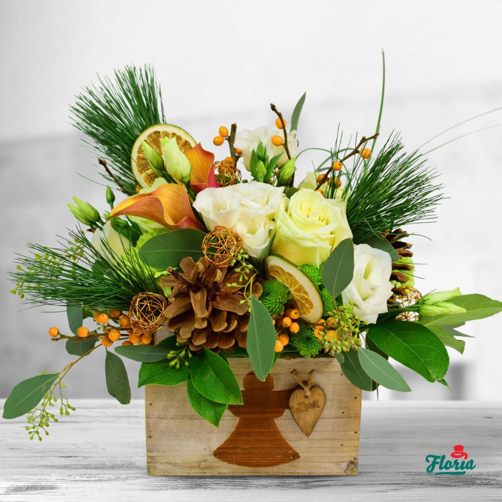 flori-ingeras-de-zapada-33198