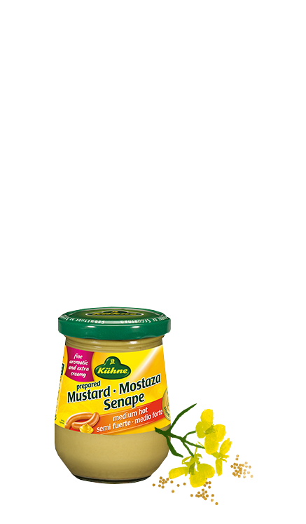 kuhne-mustard